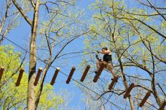The Adventure Park at Virginia Aquarium offers fifteen aerial tree top trails with over 150 elements, including ziplines, with six levels of difficulty from beginner to extremely advanced. Stuff To Do, Things To Do, What To Do Today, Unique Restaurants, Virginia Beach, Get Outside, Outdoor Activities, Detroit, Trip Advisor