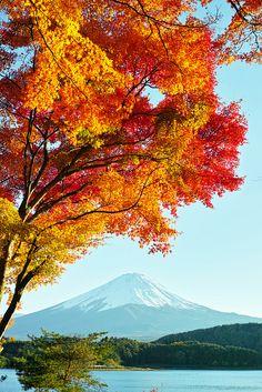 Mt. Fuji and autumn leaves, Fujikawaguchiko, Yamanashi, Japan