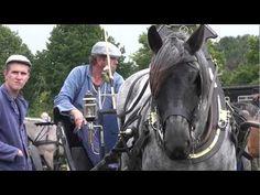 Haps Power Horse aug 2011.wmv - YouTube