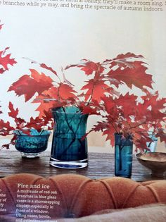A page from BHG magazine: Color scheme for furniture: teal/peacock blue and red/brown