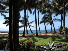 View from Mama's Seafood Restaurant on Maui
