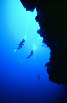 Cozumel Island - beautiful sanctuary diving.