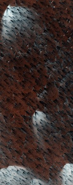 Martian Fans-The HiRISE camera on board the Mars Reconnaissance Orbiter captured this look at the spectacular patterns created by wind-blown material on the south polar ice cap of Mars. The area shown is about a kilometer across. NASA / JPL / University of Arizona