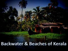 Kerala, commonly known as God's own country, is well-known for its pristine places and lush-green regions. This Indian state is naturally decorated without wonderful backwater sceneries and attractive beach areas. To tour Kerala, one must know the best places to add to their itinerary. Confused? Take a Slideshare tour to know it all: