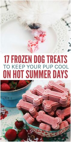 When the weather starts to heat up, we think of every way possible to cool down. Swimming, air conditioners, and frozen treats are on our lists, and there's no reason you shouldn't pamper your pooch the same way. That's right; dogs enjoy a frozen dessert now and then. Here are 17 frozen dog treats that are canine-safe and friendly to help keep your dog cool when the temperatures are up. Your Dog, Hot Weather Food, Dog Safe Foods, Dog Pamper, Cat Treats, Doggie Treats, Gourmet Dog Treats, Dog Snacks, Cool Dog Stuff