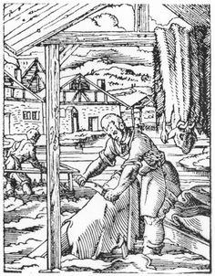 Woodcut of 12th century German tanner shaving the skin. Little has changed in the process of converting the skin to hides.