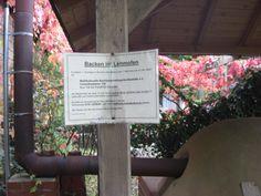 Pizzaofen Pyramidengarten - Neukölln Columbia, Urban Gardening, Lettering, Calligraphy, City Gardens, Colombia, Urban Homesteading, Letters, Apartment Gardening