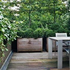 Plantenbakken 013 Hardwood Ortelius Straight Planter
