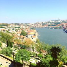 - Second day in Porto #View #Porto #Douro #Afternoon #Visit #Holidays #Portugal #Love  by __alizeekl