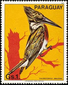 Amazon Kingfisher stamps - mainly images - gallery format