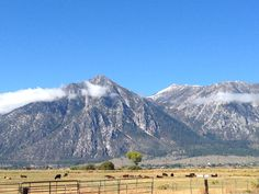 Light dusting of snow atop Job's Peak on the first day of Autumn. View from Gardnerville, Nevada.