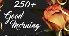 Best Latest Good Morning HD Images collection Only good morning wishes are availabe on this site, Free HD Download Good Morning wishes, Good Morning quotes, Good morning love messages and all about good morning wishes Beautiful Good Morning Wishes, Cute Good Morning Images, Good Morning Images Flowers, Latest Good Morning, Morning Pictures, Inspirational Good Morning Messages, Good Morning Love Messages, Good Morning Quotes, Good Morning Massage