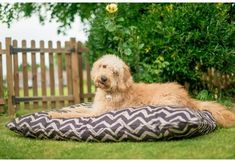 Outdoor Dog Bed: Water Resistant Dog Bed with Washable Cover from P. Dog Tent, Outdoor Dog Bed, Dog Blanket, Medium Sized Dogs, Sleeping Dogs, Large Dogs, Dog Life, Animal Rescue, Exterior