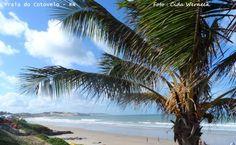 Praia do Cotovelo  -  Parnamirim  - RN    Foto : Cida Werneck