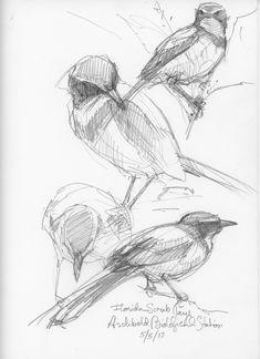 October 1 2017- January 14, 2018, Museum of American Bird Art, Canton, Massachusetts