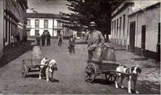 1950s?; Vila de Santa Cruz, ilha Graciosa  Centro da Vila de Santa Cruz. A calma e a pacatez da Vila