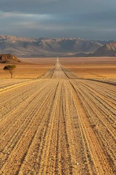 Beautiful World, Beautiful Places, Land Of The Brave, Back Road, Railroad Tracks, Location History, South Africa, Vineyard, Nature Photography
