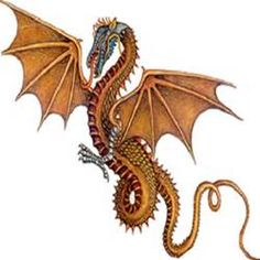 dragon with celtic symbols - Bing images