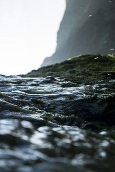 [   ] das Meer besuchen