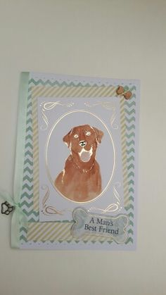 Kanban Crafts 'Love Your pets' Collection & other backing papers. Handmade by Tracey Collett