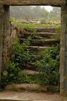 Old limestone steps leading into a Root Cellar; a subterranean place of cool and constant temperature where perishable food may be safely stored.