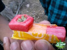 Fruity Pipe