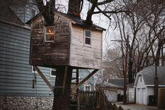 cabane d'arbre