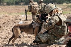 Heroes don't wear capes. They wear dog tags. #VeteransDay