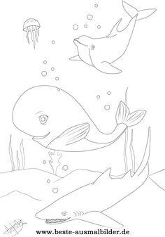 Ausmalbilder Fische Hai, Delfin, Wal