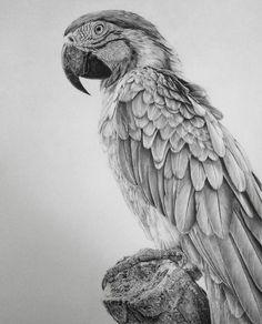 Incredible Photorealistic Drawings Beautifully Capture Fine Facial Details - My Modern Met