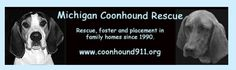 (MI): Michigan Coonhound Rescue, Inc. Detroit, MI 48219 Call Us: (248) 705-8311 Email Us: vik@coonhound911.org