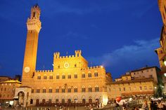 Piazza del Campo, Siena, Italy -- Been.  Wanna go back.
