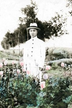 A rare hand-coloured photograph from the Maggs collection of a Chinese anti-opium reformer standing in a field of poppies, circa 1920.  Field of dreams: A remarkable exhibition sheds new light on the dark history of the opium business