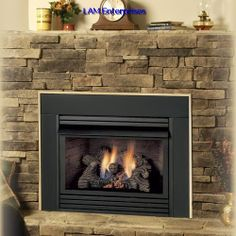 000-BTU Black Vent-Free Dual-Burner Gas Fireplace Firebox with Thermostat and Remote Control | Fireplace insert | Pinterest | Gas fireplace