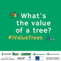 What's the value of a tree? What do they give back?  Just a few days to go until the big reveal #iValueTrees #Ealing