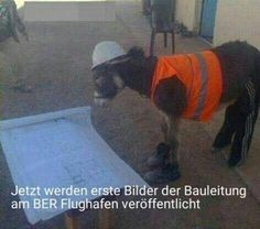 BILDER Archive - SCHWARZER-KAFFEE