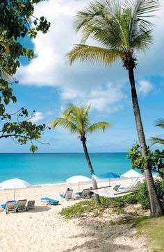 La Samanna on St Martin Caribbean Honeymoon, Honeymoon Vacations, Caribbean Vacations, Great Vacations, Vacation Spots, Family Vacations, Vacation Ideas, Places To Travel, Places To See