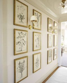 Maison de Cinq: Friday Favorites - Gallery Walls. LOVE this grouping of botanicals!