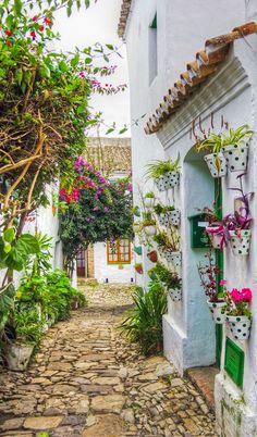 Castillo de Castellar in Cadiz, Spain • photo: Lui G. Marín on Flickr