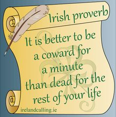 Proverb_It-is-bette2r_OK A load of Irish bull – but what is it?