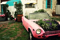 pink convertible flower bed!!!!