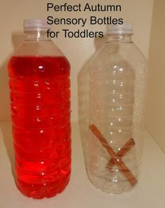 Discovery bottles and nature center for Toddlers