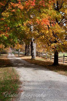 New Hampshire | Vista Photography