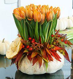 Empty Vase Florist of Los Angeles | Bright Pumpkin