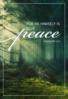"""""""For he himself is our peace, who has made us both one and has broken down in his flesh the dividing wall of hostility"""" - Ephesians - Christian - Bible Scripture Verses, Bible Verses Quotes, Bible Scriptures, Peace Scripture, Encouragement Quotes, Peace Of God, Word Of God, Inner Peace, Christian Faith"""