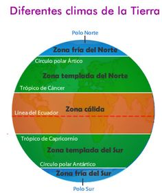 Las diferentes zonas climáticas y sus paisajes Science Lessons, Science Projects, Spanish Immersion, 5th Grade Science, History Teachers, Sistema Solar, Home Schooling, Earth Science, Graphic Organizers
