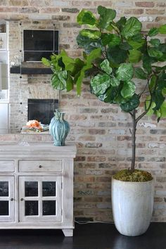 Loads of tips for how to freshen up a room on a budget. Whether it's something small or a large tree, something real or something fake, adding greenery or flowers to a room is literally like giving the room a breath of fresh air.
