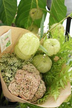 Fruit, Flowers, Royal Icing Flowers, Flower, Florals, Floral, Blossoms