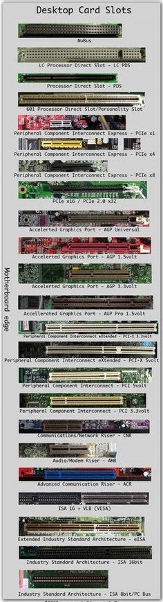 CompTIA A+ Training / Exam Tip -PC Expansion Slots. For more information to Become Certified for CompTIA A+  Please Repin and  Check out : Please visit: http://www.asmed.com/comptia-a/