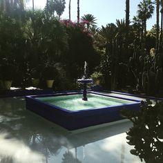 #marrakech Jardin Marjorelle